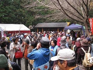 ayu2010-04.jpg